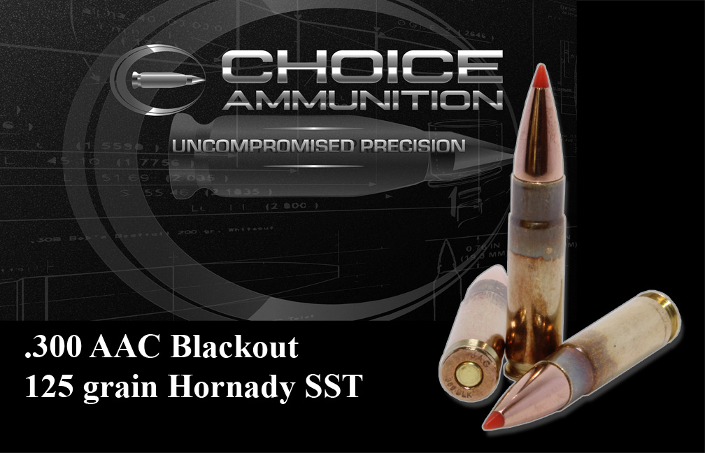 300 Blackout 125 gr Hornady SST 100%~ Hand Loaded !!