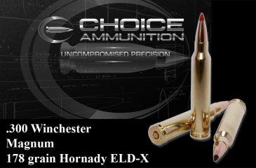 300 WSM - Choice Ammunition